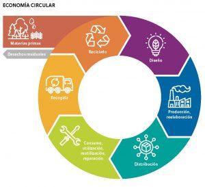 diagrama que muestra el flujo de la economía circular