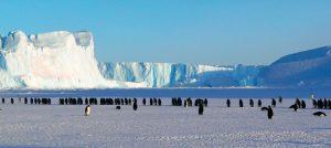 antártica chilena