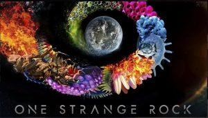 portada de one strange rock