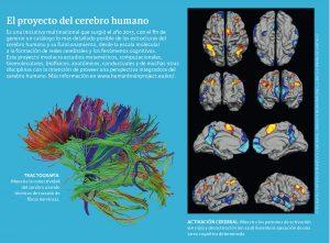 imágen digital del cerebro humano