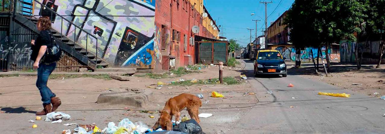 Persona caminando por una calle de tierra, detrás un block con casas y un perro husmeando basura